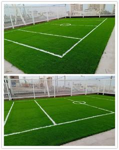 Chile-Colegio Costa CordIllera grass